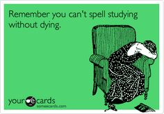 Remember you can't spell studying without dying.