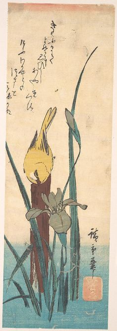 Utagawa Hiroshige (Japanese, 1797–1858). Bird and Iris. Edo period (1615–1868), Japan. The Metropolitan Museum of Art, New York. H. O. Havemeyer Collection, Bequest of Mrs. H. O. Havemeyer, 1929 (JP1897)