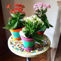 Na casa de mamã rolam muitas de minhas artes. Neste final de semana flagrei alguns vasos multicoloridos acompanhados por flores da fortuna e uma mesa fofa de mosaico. Não resisti e hoje mostro a vocês! Deus é muito bom me colocou em uma família que sempre me acolheu e que me apóia em minha profissão de artesã. Tenho muito o que agradecer!  #alemdaruaatelier #alemdarua #verokraemer #vasoscoloridos #vasosdecorativos #kalanchoe #flowerpower #arte #vasospintados