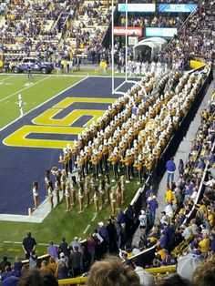 LSU Golden Band from Tigerland. Geaux tigers!!!