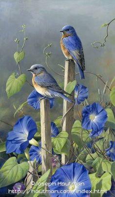 Ideas painting love birds bluebirds for 2019 Pretty Birds, Love Birds, Beautiful Birds, Beautiful Images, Beautiful Family, Simply Beautiful, Images Vintage, Tier Fotos, Colorful Birds