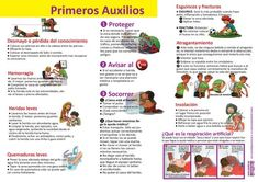 Infografías de Ciencias Naturales – aulaciclo3 Bussines Ideas, First Aid Kit, Outdoor Survival, Green Life, New Tricks, New Technology, Quizzes, Science, Exercise