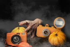 Lomography, Going Crazy, Cameras, Have Fun, Mood, Halloween, Link, Pictures, Photos