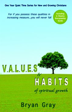 V.AL.U.E.S. and H.A.B.I.T.S. (Great Quiet Time Book) $13