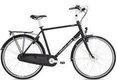 Raleigh Carlton: Raleigh elcykel med skjult batteri. 17.000