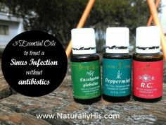 Can you use essential oils for sinus infections? Absolutely! I share how these 3 oils help my {formerly} chronic sinus infections