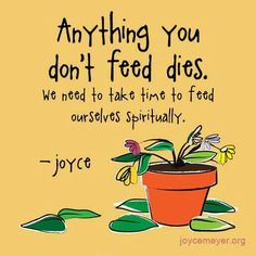 Feed your soul!                                                                                                                                                                                 More