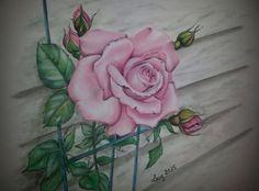 """Rosa"" di Luciana Giaccaglia  Soft Pastels"