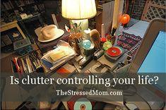 Body Clutter Control Journal   FlyLady   Pinterest   Clutter Control ...