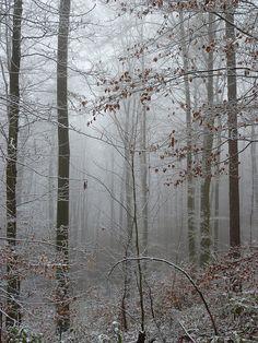 Odenwald, Germany