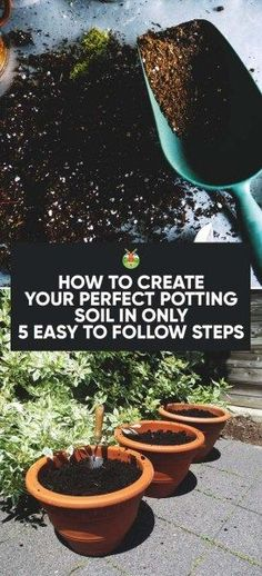 Creating your own potting soil make you self-sufficient and saves you money. We show you how easy it is to create quality, nutritious, healthy potting soil.