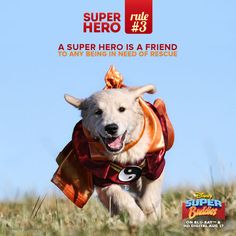 Super Hero Rules Gallery