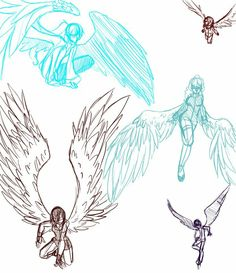 Wings Reference and Pose