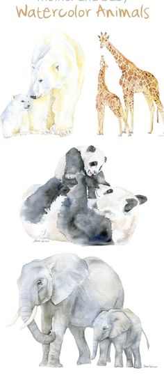 Watercolor Animals, Watercolor Paintings, Watercolour, Mother And Baby Animals, Baby Animal Drawings, Drawing Animals, Illustration, Baby Art, African Animals