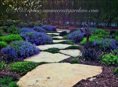 Front Yard Landscaping Design Ideas, Pictures, Remodel, and Decor - page 19