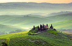 Podere in Toscany, Italy. Photograph by: ronnybas, Fotolia.com