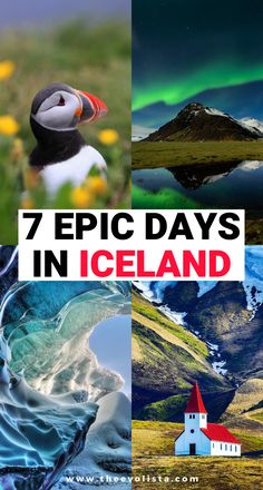 The Ultimate Iceland Travel Guide for 7 Days in Iceland | Iceland Ring Road Itinerary | Prettiest places in Iceland | Best things to do in Iceland | Where to stay on an Iceland Road Trip | Tips and tricks for road tripping in Iceland | Travel tips for your Iceland vacation | Best time to go to Iceland | Where to go in Iceland | Epic photo spots in Iceland | Best waterfalls to see in Iceland | Hidden Gems in Iceland | Best views in Iceland | Bucket list Iceland places #Iceland #traveltips Best Iceland Tours, Iceland Travel Tips, Iceland Road Trip, Europe Travel Guide, Travel Destinations, Bag Essentials, European Travel Tips, Road Trip Hacks, Vacation Trips