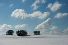 SNOW AND SKY: Clouds passed over the snow-covered landscape near Götemitz, on the Baltic Sea island of Rügen, Germany, Wednesday. (Stefan Sauer/AFP/Getty Images)