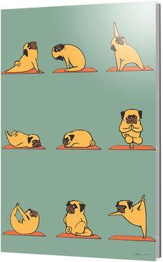 Curioos Pug Yoga by Huebucket (Acrylic)