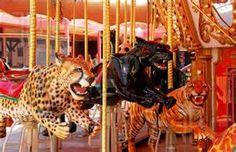 kitten carousel - Bing Images