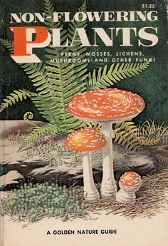 SC.3.L.15.2 (3rd grade)-Classify flowering and nonflowering plants into major groups such as those that produce seeds, or those like ferns and mosses that produce spores, according to their physical characteristics.  I would like to have this book in my classroom as a resource for students to learn about non-flowering plants.