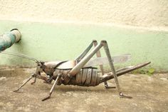 Sculpture of a Great Green Bush Cricket made from stainless steel cutlery and other scrap metal pieces.    The sculpture in the photos has