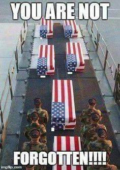 Fallen Heroes have earned the right, and the honor to be drapped in the US flag. I Love America, God Bless America, Independance Day, My Champion, Military Love, Military Quotes, Army Quotes, Home Of The Brave, Land Of The Free