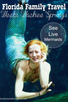 Once in a lifetime, cool, Old Florida style experience on Florida's West Coast, come see the live mermaids, zoom down watersides into freshwater springs, and experience a taste of vintage yesteryear. Perfect for all ages, this unique park is a hidden gem of roadside Florid!  Florida Family Travel Weeki Wachee Springs