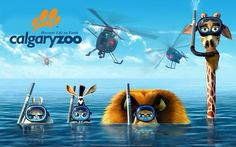 DreamWorks Animation's 'Madagascar Europe's Most Wanted' has beaten all expectations abroad becoming this year's most succesful film in Russia. Dreamworks Animation, Dreamworks Movies, Cartoon Movies, Horror Movies, 2012 Movie, I Movie, Movie Titles, Shrek, Cartoon Wallpaper