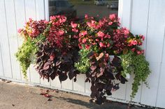 """Large Window Box Planter, photo by Chris Eirschele, taken at Dill's Greenhouse in Ohio. From the article """"Enabling Gardening Strategies for Kids with Disabilities."""" http://decodedparenting.com/enabling-gardening-strategies-kids-disabilities/1939"""