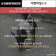 댓글헌터5편_p9 | 출처: web7minutes