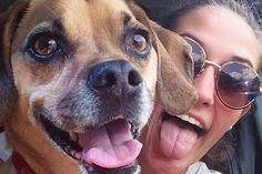 Foto's van dieren op social media moeten verboden worden. Foto's van huisdieren op bijvoorbeeld Facebook en Twitter schenden de privacyvan de dieren. Dat vindt de Amerikaanse organisatie Animal Rights Defenders. Op social media plaatsen mensen graag foto's van hun huisdier. Soms zijn honden of katten zelfs te zien op profielfoto's. Animal Rights Defenders vindt dat daar een einde aan moet [...]