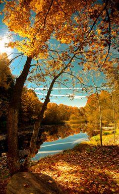 WORLD OF COLOURS #nature #landscape