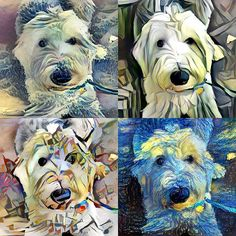My sheeple got a little carried away with #neuralstyle and combined me with famous paintings.  Can you guess which ones?  #neuralstyle #deepdream #googledeepdream #digitalart #lua #programming #devlife #techdogs #dogart #creativecoding #art #dogs #oldenglishsheepdog #oes #vpi #viejopastoringles #dogsofla #calidogs #dogsofinstagram #coding #codinglife #siliconbeach #lovemydog by esfluffypants