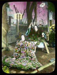 Chrysanthemum living figure showing the Play og Gosho Gorozo, Tokyo Enami Studio Lantern Slide No : A50. About 1920's, Japan