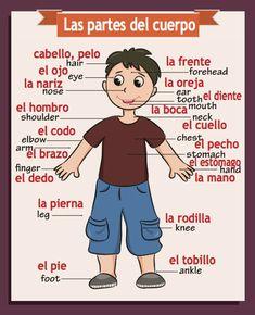English Classroom Posters, Spanish Classroom Activities, Preschool Spanish, Spanish Lessons For Kids, Learning Spanish For Kids, Spanish Teaching Resources, Spanish Lesson Plans, Elementary Spanish, Spanish Language Learning