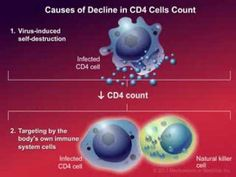 How HIV Causes Disease - YouTube
