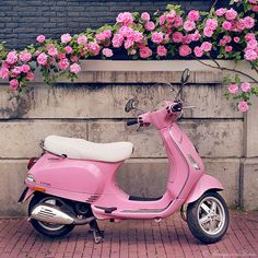 Europa fotografía vespa rosa y rosas arte por GeorgiannaLane