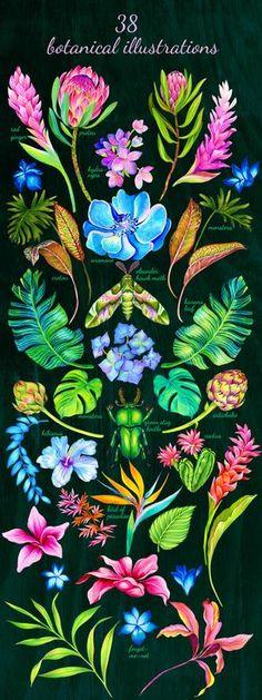 a set of hyper-natural botanical illustration, bouquets and patterns.