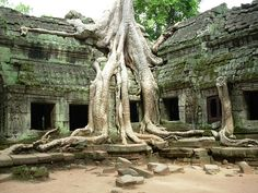 Cambodia - Angkor Wat. Been here and it was Amazing
