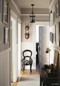 Crazy for this hallway (with the exception of the skulls -- no no):  adore the paint color w/white beadboard wainscoting; lantern; gallery w/mixed frames; doors; chair w/great white + black cushion; floors, shag rug; console table