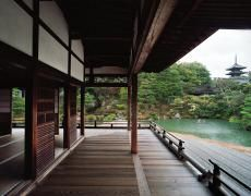 """Jacqueline Hassink Ninna-ji 2,Northwest Kyoto,6 and 9 March 2009 (8:00–9:00) Chromogenic prints41 x 51"""", 50 x 63"""", and63 x 79"""" Shared edition of 7"""