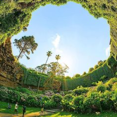 A dream garden - the Umpherston Sinkhole (Mount Gambier, Australia). A marvelous garden that is arranged in a sinkhole. The spot was created when the roof of the limestone chamber collapsed. It`s a perfect place for anyone to stop by and enjoy the picturesque beauty oasis.