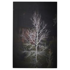 Loney tree of Zion Metal Print  $197.85  by DrSilly31  - custom gift idea