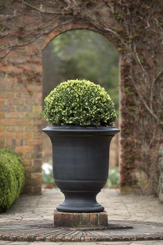 Elegant Garden Urns..beautiful And Stately! | Gardening | Pinterest | Garden Urns,  Urn And Gardens