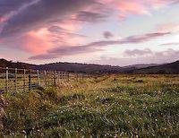 Beautiful New Zealand Fence.