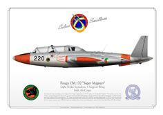 IRISH AIR CORPS Light Attack Squadron, 1 Support Wing Italian Air Force, Defence Force, France, Military Art, Military Aircraft, Fighter Jets, Irish, War Memorials, French Style