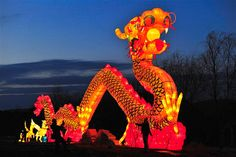 Tourists take a picture in front of a giant dragon lantern during a lantern festival in Shenyang, Liaoning Province, ahead of the Chinese New Year... Image: Colours of Chinese New Year (© REUTERS)