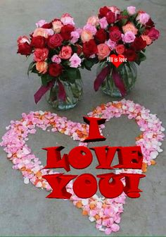 I Love You Images, Love You Gif, You Dont Love Me, Love Hug, Good Morning Images Flowers, Wonderful Flowers, Tom And Jerry Wallpapers, Love Rose Flower, Lovely Good Night