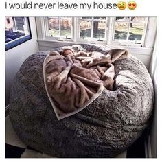 I Would Never Leave My House | Funny Pictures, Quotes, Pics, Photos, Images